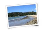 Buffalo Beach Whitianga Accommodation
